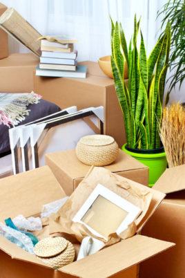 Utiliser container pour un déménagement international